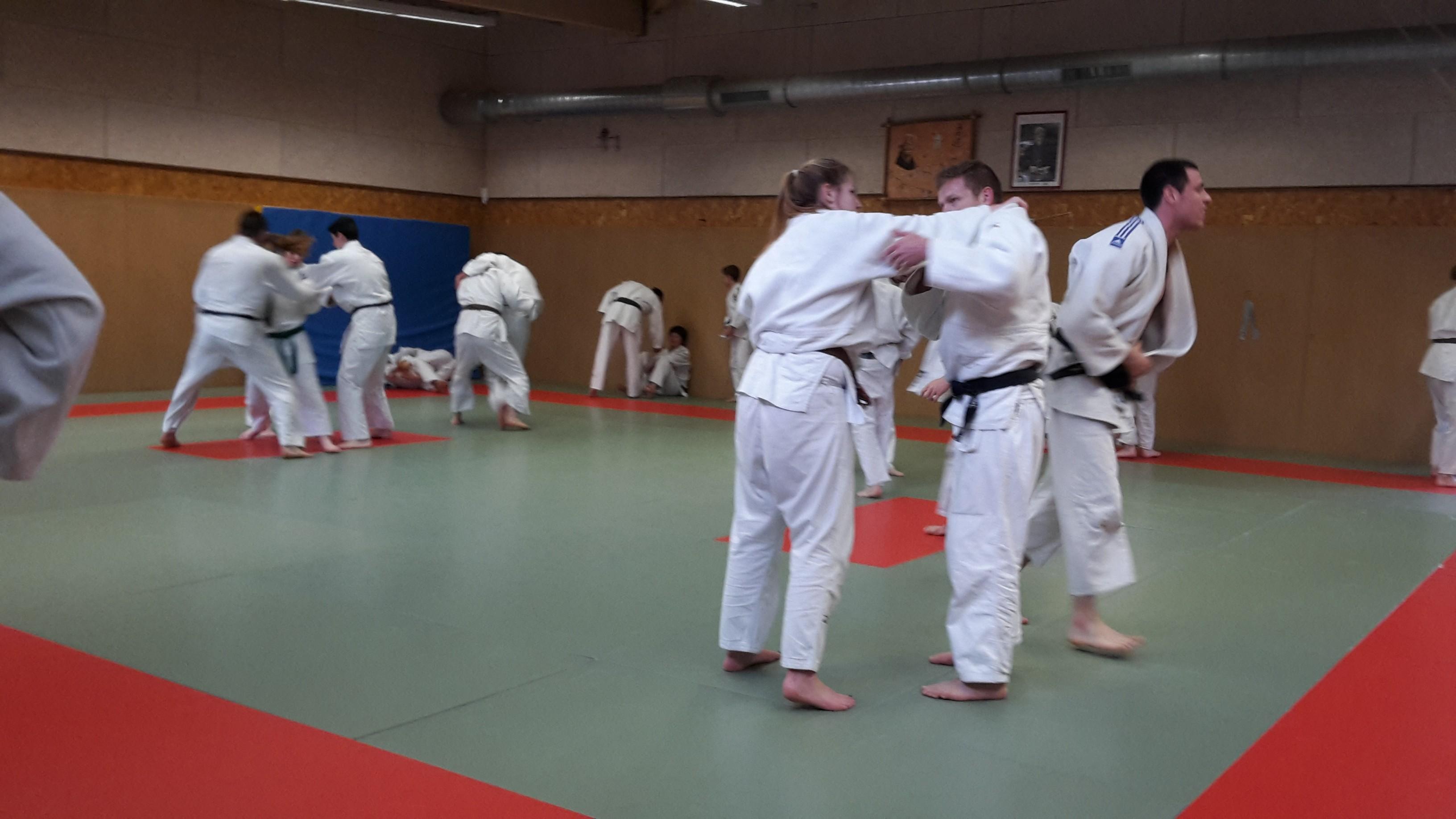 Judo-voile